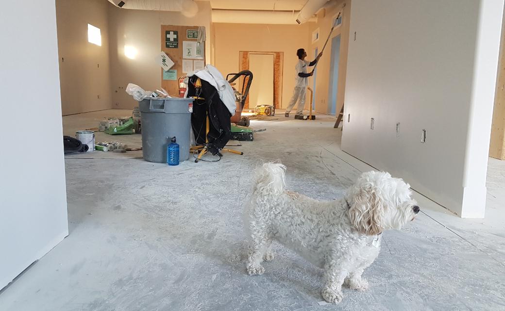 Baustelle: Für den Mietwohnungsneubau gilt eine neue Sonderabschreibung.