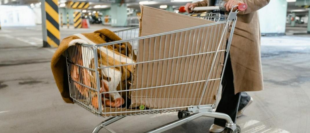 Wohnungslose mit Einkaufswagen