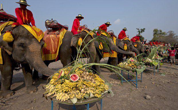 Feier des nationalen Elefantentages in der thailändischen Provinz Ayutthaya: Thailand zeigte sich zuletzt robuster als andere Schwellenmärkte der Region. (Foto: Getty Images)