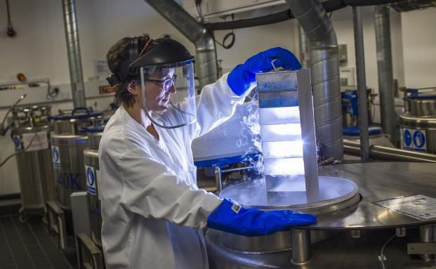 Volle Konzentration im Labor: Die Krebsforschung macht dem Biotech-Sektor Dampf. (Foto: Getty Images)