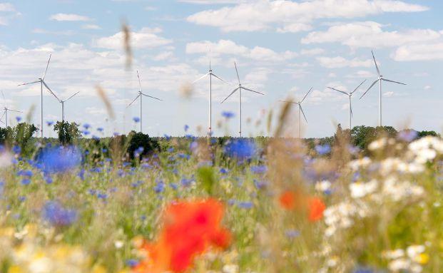 Windkrafträder stehen im Fokus der Allianz Deutschland. Foto: Allianz