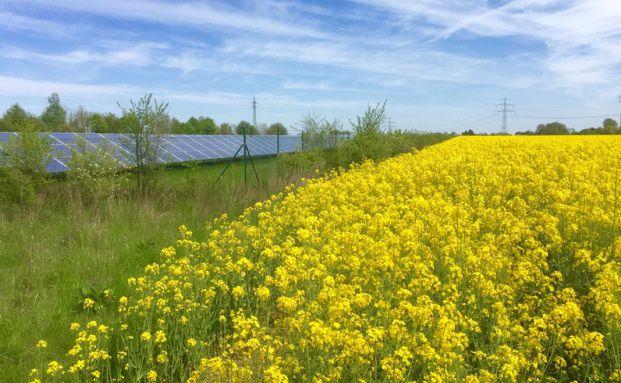Windenergieanlage an der Autobahn: Laut Kames Capital besteht ein starker Zusammenhang zwischen Nachhaltigkeitsleistung und positiver Aktienkursentwicklung eines Unternehmens. (Bild: TimSiegert-batcam.de/Fotolia)