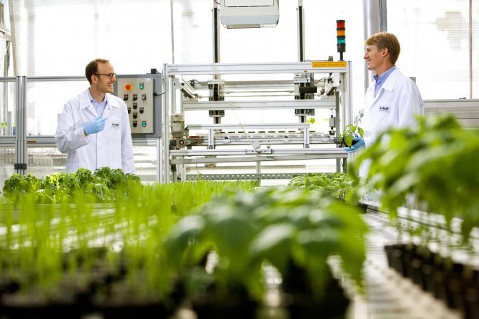 Wirkstofftest in einem Biotech-Labor (Foto: BASF)