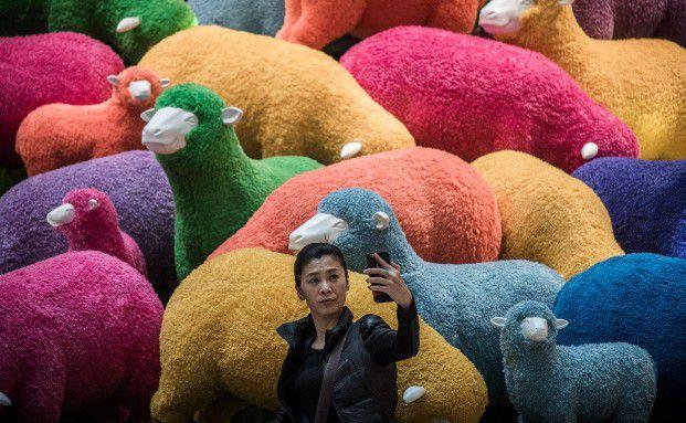 In China steht das Jahr des Schafs für Frieden, Glück und eine gute Ernte. (Foto: Getty Images)