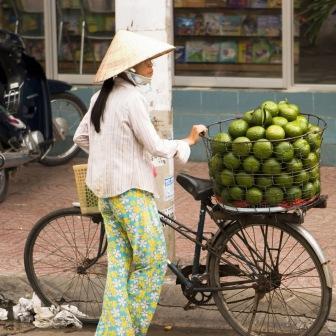 : Asien-Fonds für Öko-Aktien von Oppenheim