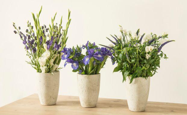 Schnittblumen per Abo ins Haus geliefert: Das Crowdfunding-Projekt von Unternehmerin Franziska von Hardenberg hat sich als sehr erfolgreich erwiesen. Foto: Bloomy Days