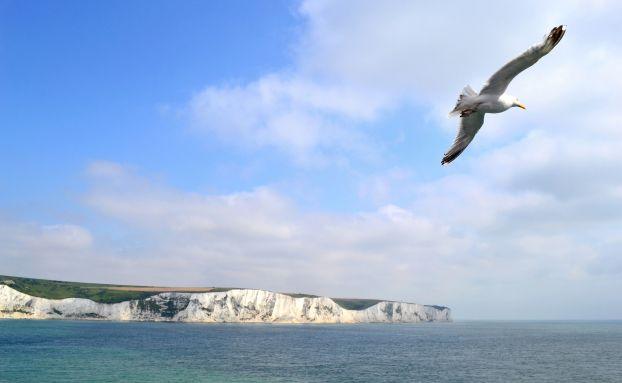 Die Kanalküste bei Dover ist der Inbegriff des britischen Selbstverständnisses. Großbritannien ist die größte Länderposition im Jupiter Dynamic Bond. Foto: Getty Images