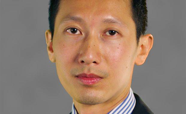 Soo Hai Lim, Manager des Baring Asean Frontiers