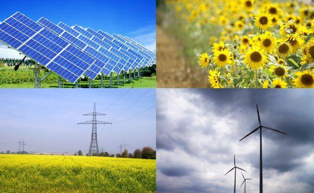 Nachhaltige Investmentfonds sind nicht mehr so beliebt wie 2010. Foto: Fotolia