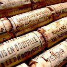 : Weingüter und Reben im Private-Equity-Fonds