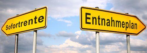 Sofortrente oder Entnahmeplan?<br/>In der Praxis wird von Anlegern oft eine<br/> Kombination aus beiden favorisiert.