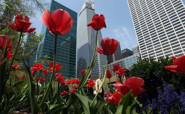 Die Symbiose aus Immobilien und Holland (Tulpen) liegt <br>im Trend, Foto: Getty Images