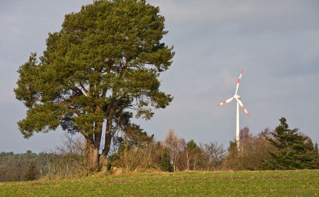 """Windkraft gehört zu den Erneuerbaren Energiequellen, auf die auch viele Versicherungskunden setzen. Foto: Thorben Wengert / <a href=""""http://www.pixelio.de"""" target=""""_blank"""" data-htmlarea-external=""""1"""">pixelio.de</a>"""