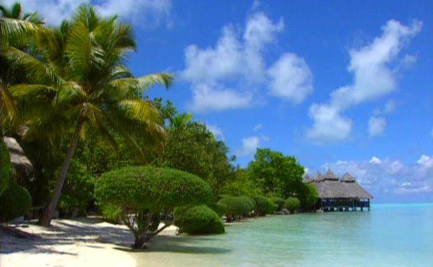 Hawaii wird immer beliebter. Foto: Getty Images