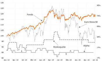Schematische Darstellung der in dieser Analyse berechneten Rendite- und Risikomaße