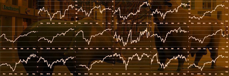 Ein-Jahres-Charts von 17 vorgestellten Fonds