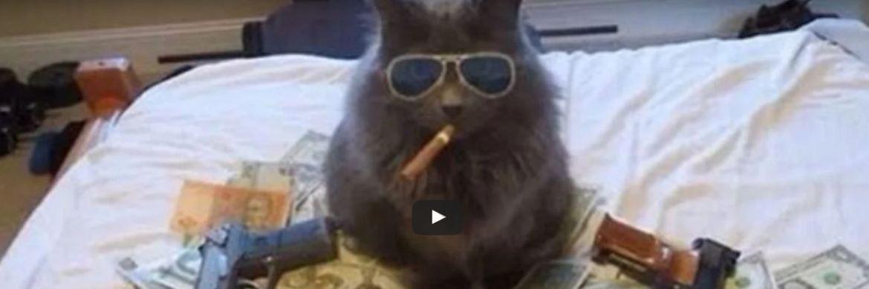 Funny Friday: So greift YouTube-Star LeFloid die Deutsche Bank an|© Screenshot des YouTube-Videos