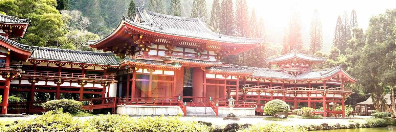 Absolut Research: Aktive Japan-Fonds im Mittel besser als passive ETFs|© unsplash.com