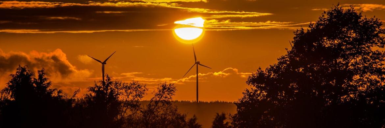 Neuer Wind für Erneuerbare Energien: Auch US-Investor Warren Buffet trennte sich jüngst von Aktien großer Erdölunternehmen. |© pixabay.com