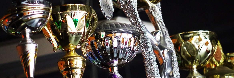 Siegerpokale: Den Sieger der Fund Selector's Challenge geben wir im Juni 2018 bekannt|© pixabay.com