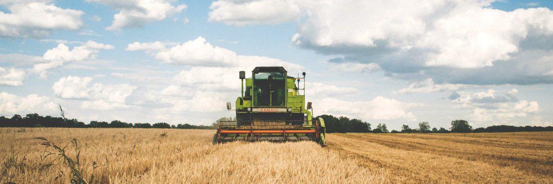 Landwirtschaft: Prognosen zufolge wächst die Weltbevölkerung bis 2050 um 2,2 Milliarden auf 9,7 Milliarden Menschen, für die nachhaltig Nahrungsmittel produziert werden müssen. Daneben ändern sich die Ernährungsgewohnheiten: Eine nährstoffreichere Ernährung, sporadische Mahlzeiten, der Fokus auf Genuss sowie Sorgen um Qualität und Transparenz der Wertschöpfung in Ernährungssektor sind Faktoren, die den Konsum immer stärker prägen.|© freestocks.org