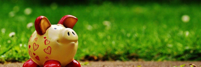 Ein Sparschwein im Grünen: Seit Sommer 2017 hat die Sparmotivation der Deutschen abgenommen. |© Pixabay
