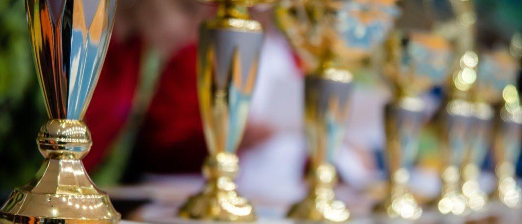 Pokalsammlung: Die Ratingagentur Scope hat vier Fonds von BlackRock ausgezeichnet|© dizfoto1973/Fotolia