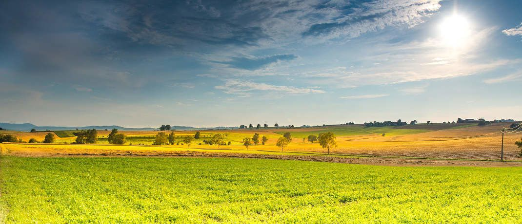 Der Umwelt zuliebe: Nachhaltige Investments sind so beliebt wie noch nie.|© Pixabay