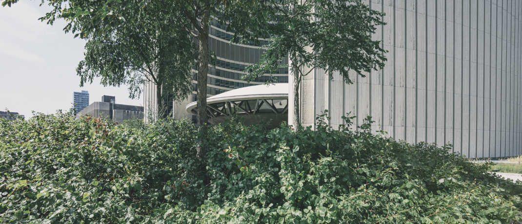 Bäume vor einem Bürogebäude: Das Thema Nachhaltigkeit spielt auch für immer mehr Investoren eine Rolle. |© Scott Webb