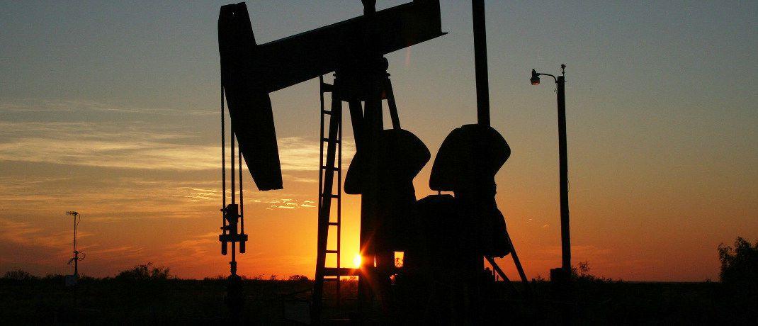 Ölförderanlage: Energierohstoffe bieten laut Dominik Poiger gute Anlagechancen, auch wenn der aktuelle Handelsstreit den internationalen Handel vorübergehend verlangsamen dürfte.|© Pixabay