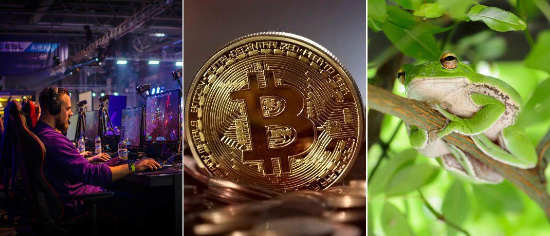 E-Sport, Kryptowährungen wie der Bitcoin und Nachhaltige Investments: Diese drei ETF-Trends bringt das Jahr 2019, sagt Dominik Poiger, Portfoliomanager beim New Yorker Asset Manager Vaneck.|© Jamie McInall, Pixabay