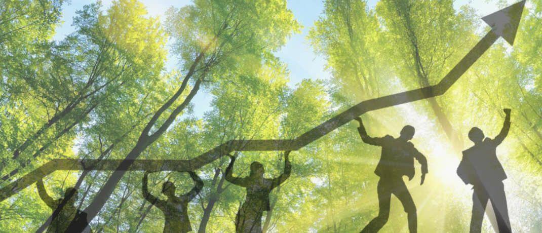 Nachhaltige Geldanlagen verbuchen anhaltende Mittelzuflüsse. |© Forum Nachhaltige Geldanlagen