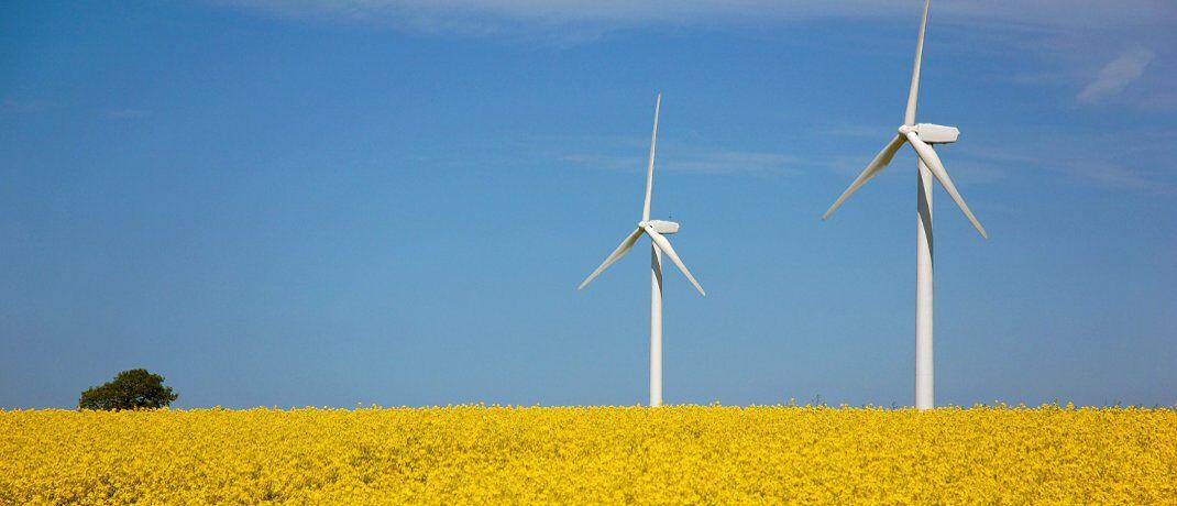 Windräder auf einem Feld. Die meisten Fonds mit dem Fokus Nachhaltigkeit sind Aktienfonds.