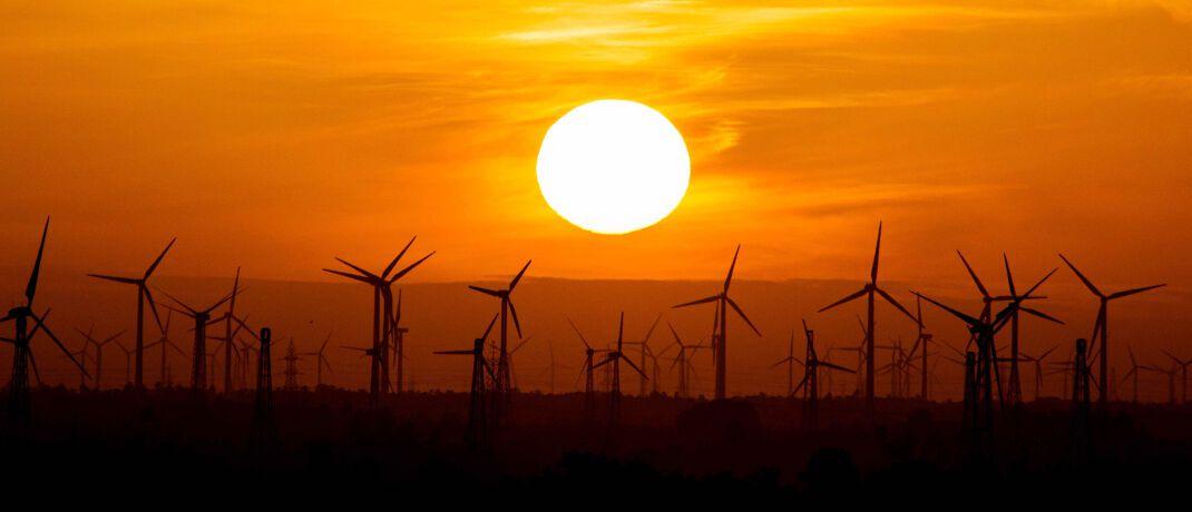 Windpark bei Sonnenuntergang: Der Pangaea Life Fonds investiert vorwiegend in Erneuerbare Energien wie Windkraft und Fotovoltaik.
