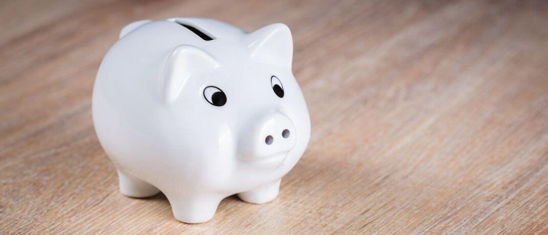 Sparschwein: Die Flexpension Fonds der DWS dienten vielen Sparern als Investment fondsgebundener Lebensversicherungen zur Altersvorsorge.