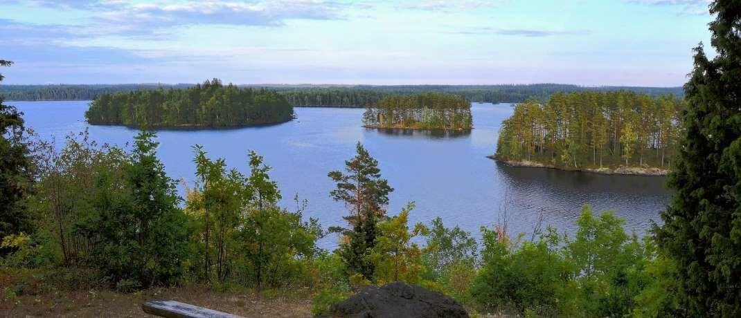 Ein Waldsee in Schweden: Der neue Nachhaltigkeits-Chef der Bank J. Safra Sarasin hat früher bei Nordea sowie bei Banco Funds & ABN Amro Asset Management in Schweden gearbeitet.|© Pexels