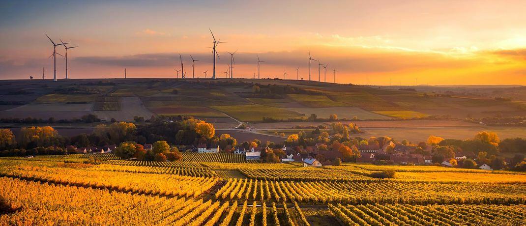 Konjunktur und Klimaschutz: Wie sich das eine mit dem anderen vertragen kann | DAS INVESTMENT