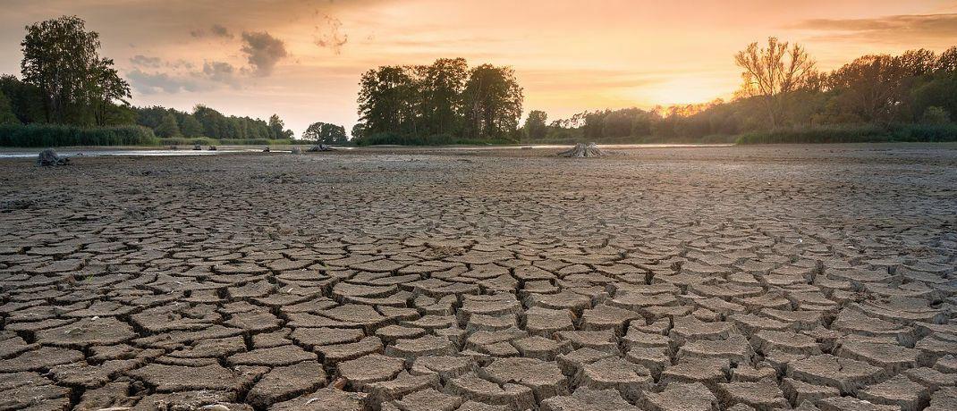 Nur einer von vielen Aspekten in Sachen Nachhaltigkeit: Dürren können ganze Regionen und Industrien gefährden.
