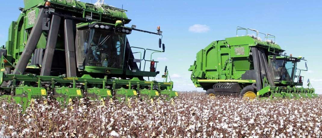 Baumwollernte in Australien: Die Senkung des Wasserverbrauchs ist für viele Unternehmen zu einem wirtschaftlichen Anliegen geworden.|© imago images / Xinhua