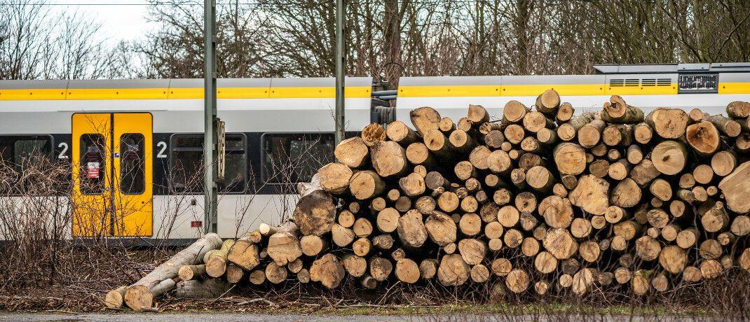 Nach dem Orkan Sabine gefällte Bäume entlang der Bahnstrecke zwischen Duisburg und Düsseldorf: Das Orkantief erreichte Stufe 10 bis 12 auf der Beaufort-Skala und ist somit versicherungsrechtlich relevant.|© imago images / Jochen Tack