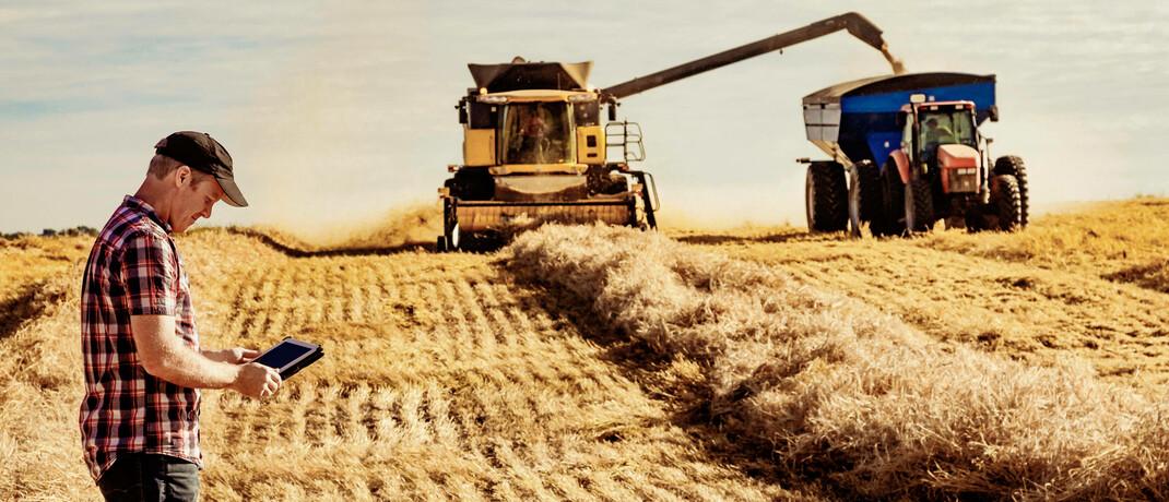 Russland, die Ukraine und Rumänien haben ihre Weizenexporte zunächst gestoppt. Getreide könnte deshalb, laut BMO Global Asset Management, knapper werden. |© imago images / Design Pics