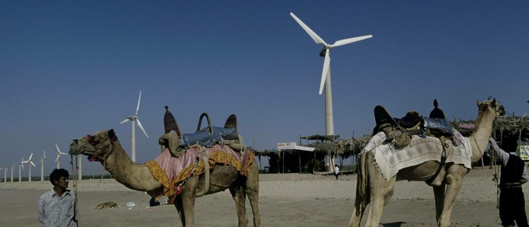 Windräder in Indien: Aktien im neuen Vanguard-Fonds müssen den Nachhaltigkeitsprinzipien der Vereinten Nationen gerecht werden.