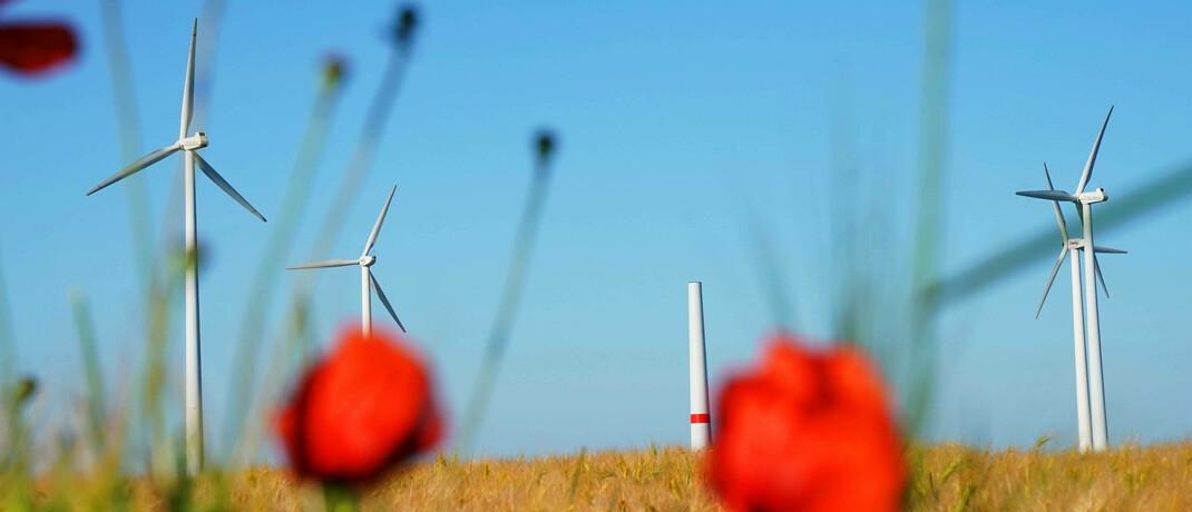 Windräder in der Uckermark: Raus aus der Braunkohle, rein in erneuerbare Energien – für diesen Schritt hat sich ein Energieversorger aus Deutschland auch auf Druck von Aktionären entschieden.