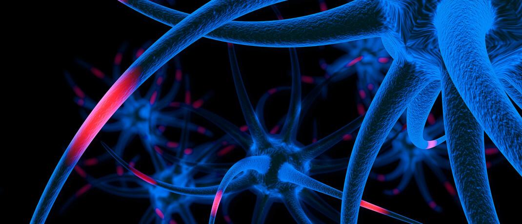 Nervenzellen im Elektronenmikroskop: Technologische Durchbrüche beschleunigen die Arzneimittelentwicklung und verkürzen die Zeit bis zur Testphase neuer Impfstoffe. |© imago images / Imaginechina-Tuchong