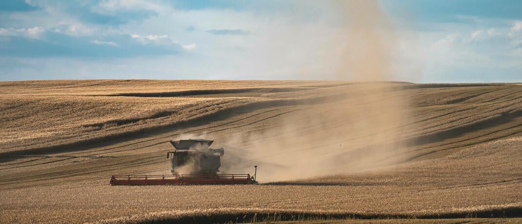 Erntefahrzeug auf trockenem Weizenfeld in Thüringen im Juli 2020. |© Imago / Jacob Schröter