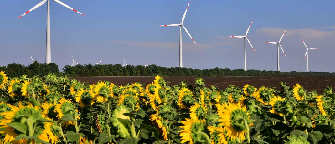 Windpark mit einer Kapazität von 150 Megawatt: Über Impact Investing können Anleger in Firmen mit einem auf Nachhaltigkeit ausgerichteten Geschäftsmodell investieren, etwa in der Energiewirtschaft.|© imago images / ITAR-TASS