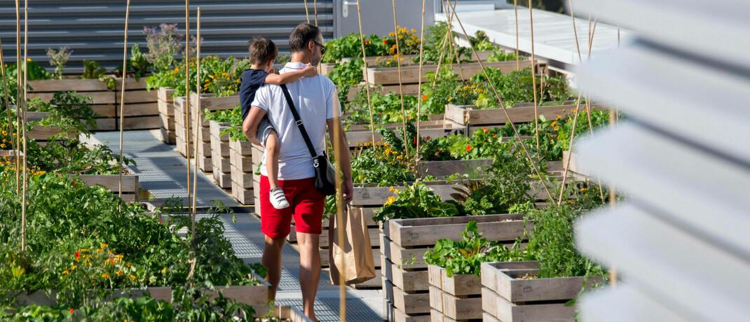 Stadtgarten auf Hochhausdach in Paris: Der Wunsch nach einer grüneren Wirtschaft beeinflusst immer mehr Branchen – das spiegelt sich auch in der Vermögensverwaltung wider. © imago images / IP3press
