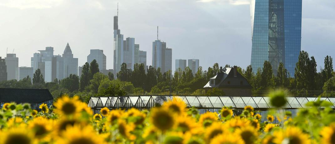 Grüner Finanzplatz Frankfurt: In diesem Jahr flossen bislang Rekordsummen in nachhaltige Fonds und ETFs.|© imago images / Xinhua