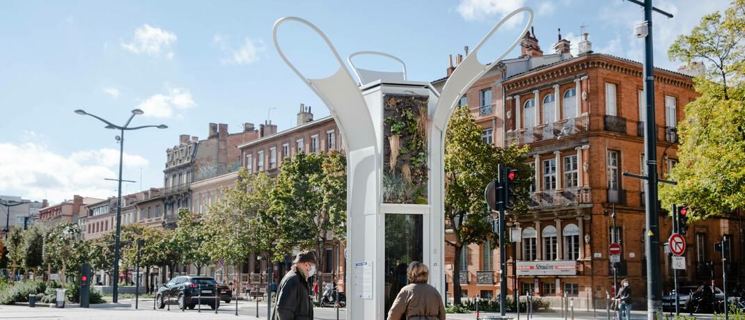 Ein Algenbaum soll in der französischen Stadt Toulouse die CO2-Konzentration in der Luft verringern