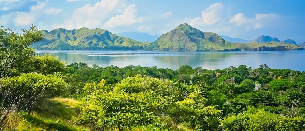 Insel Komodo in Indonesien